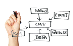Content Management System Service (CMS) Developers work